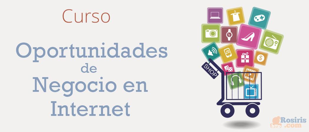 Curso: Oportunidades de Negocio en Internet